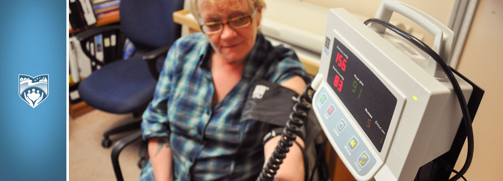 Goose Bay Blood Pressure Monitor